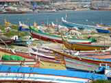 TGS-boats